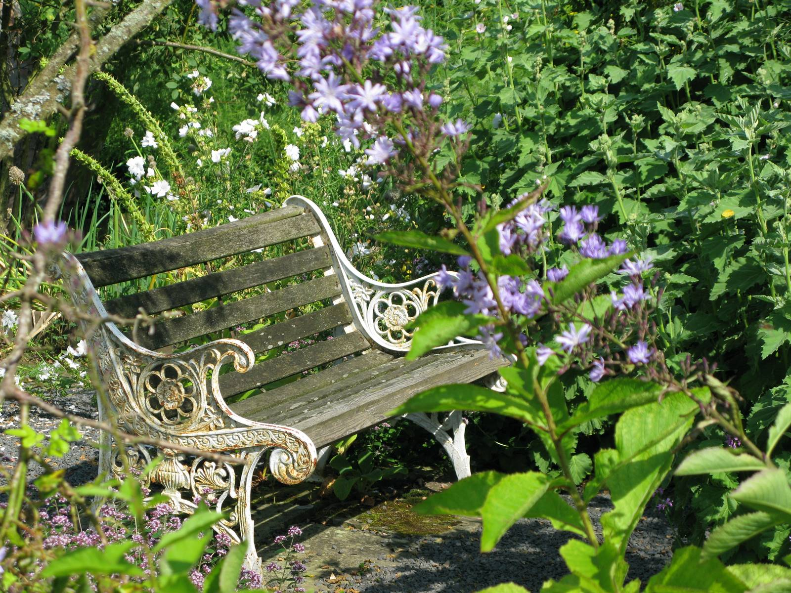 Chesters Walled Garden England (4)