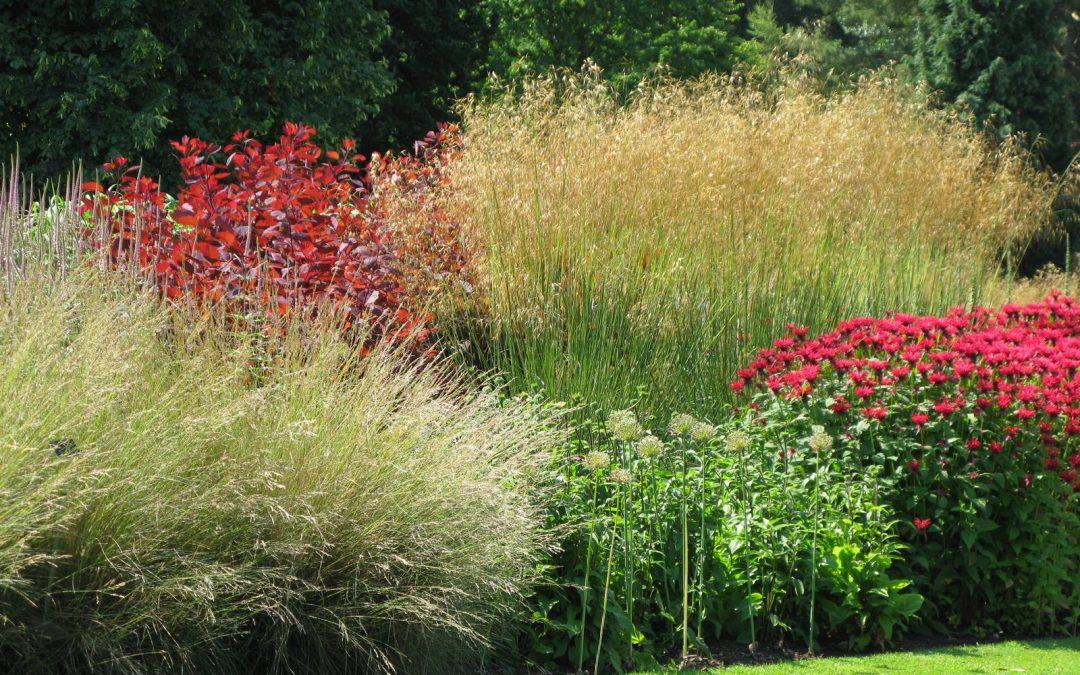 Harlow Carr, RHS Gardens