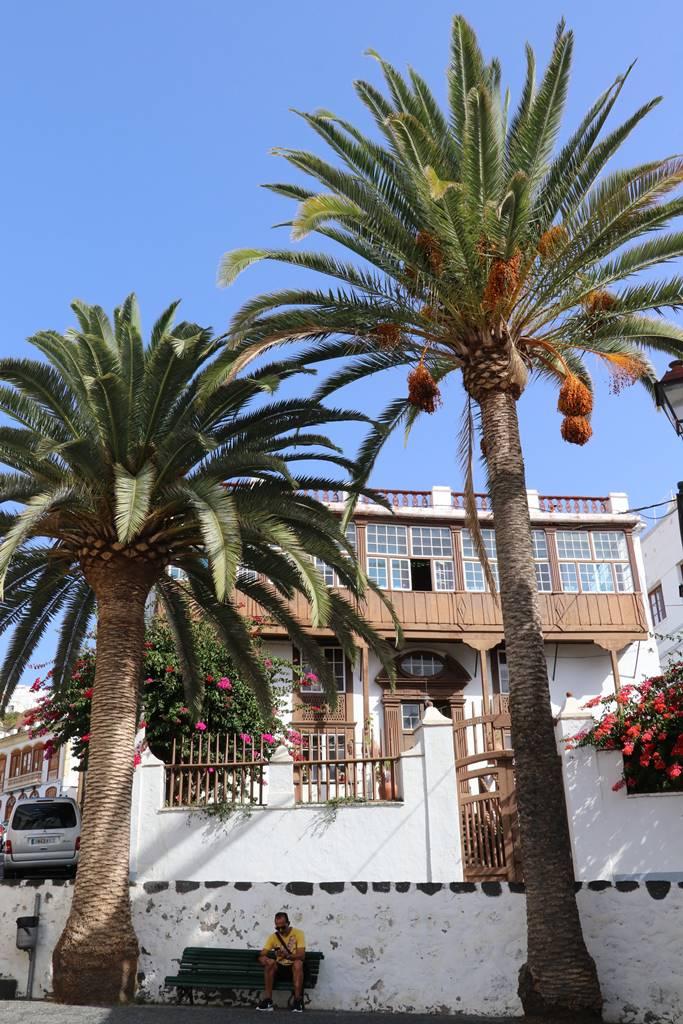 La Palma Canaries (26)