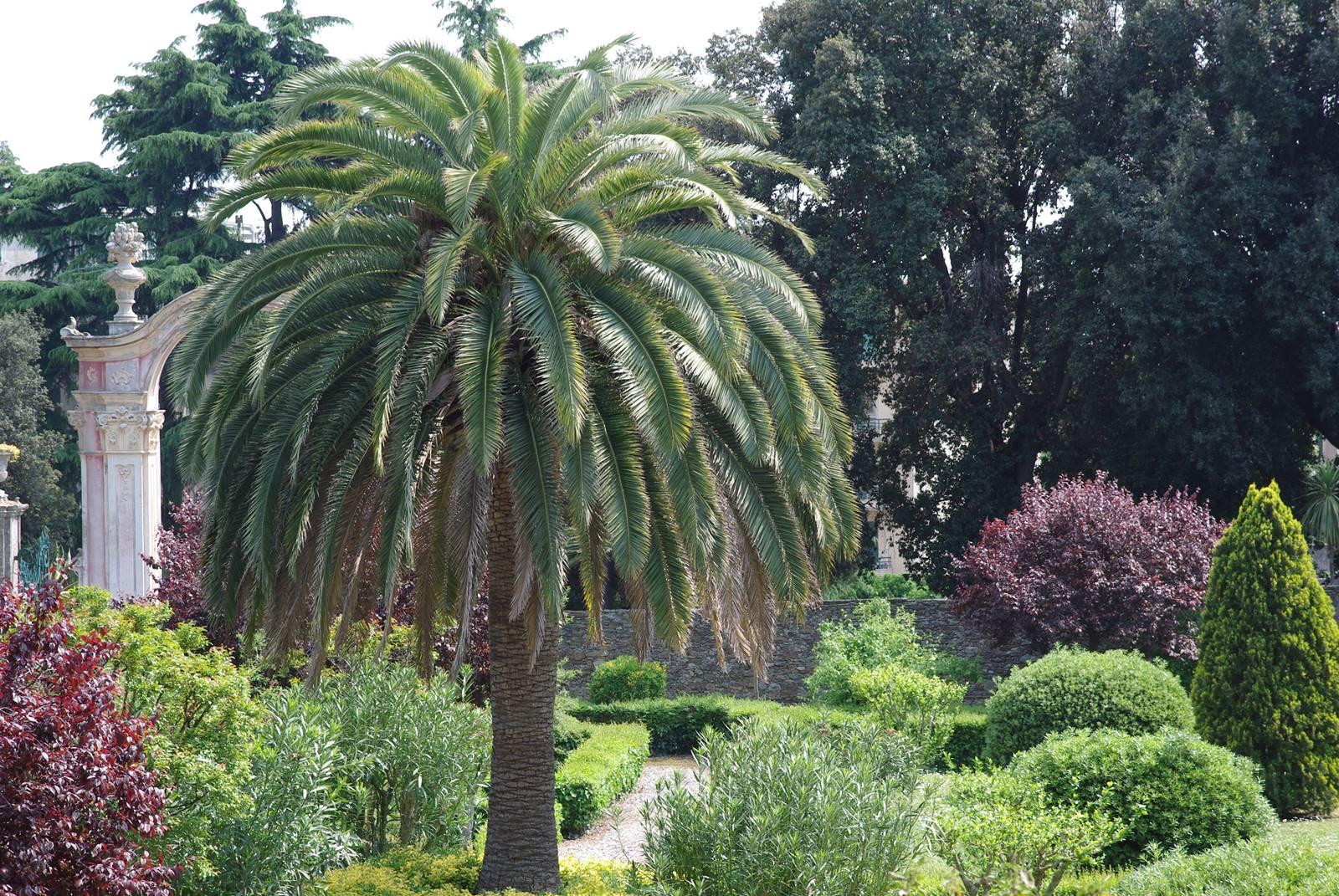 Giardini Farragiana (2)