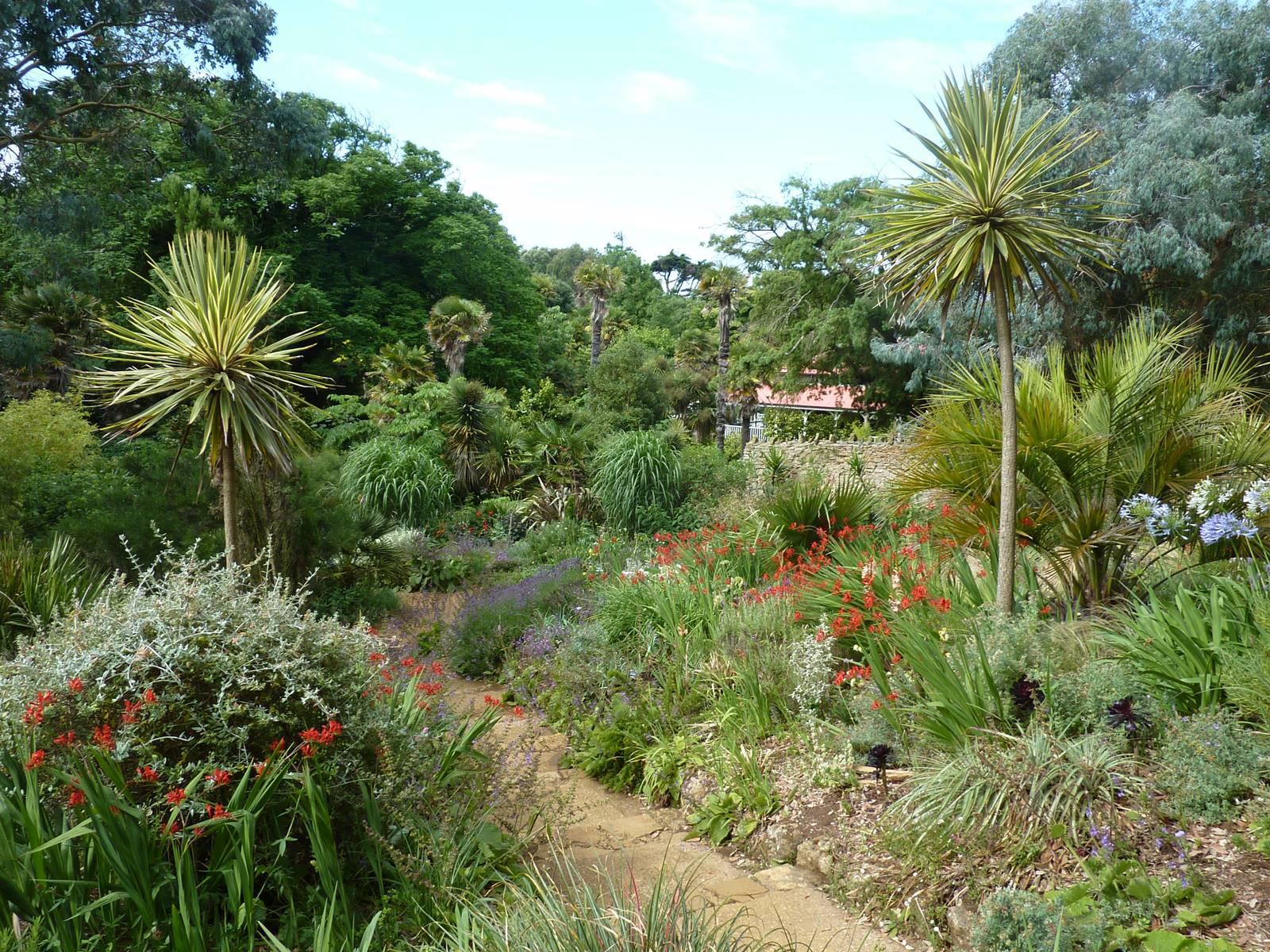 Abbotsbury subtropical gardens (4)