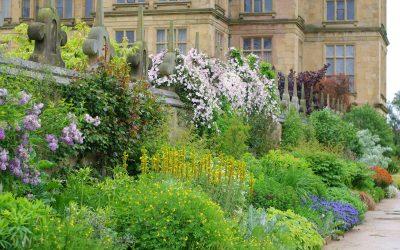 Hardwick Hall & Garden