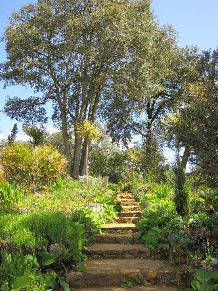 Jardins Abbotsbury (1)