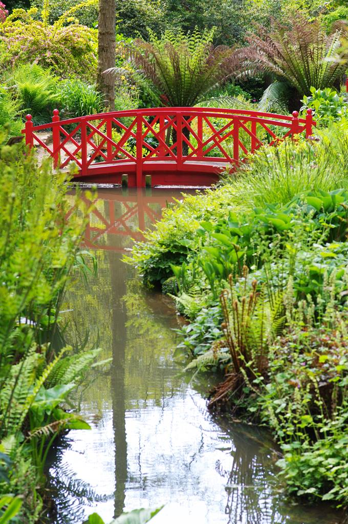 Jardins Abbotsbury (2)