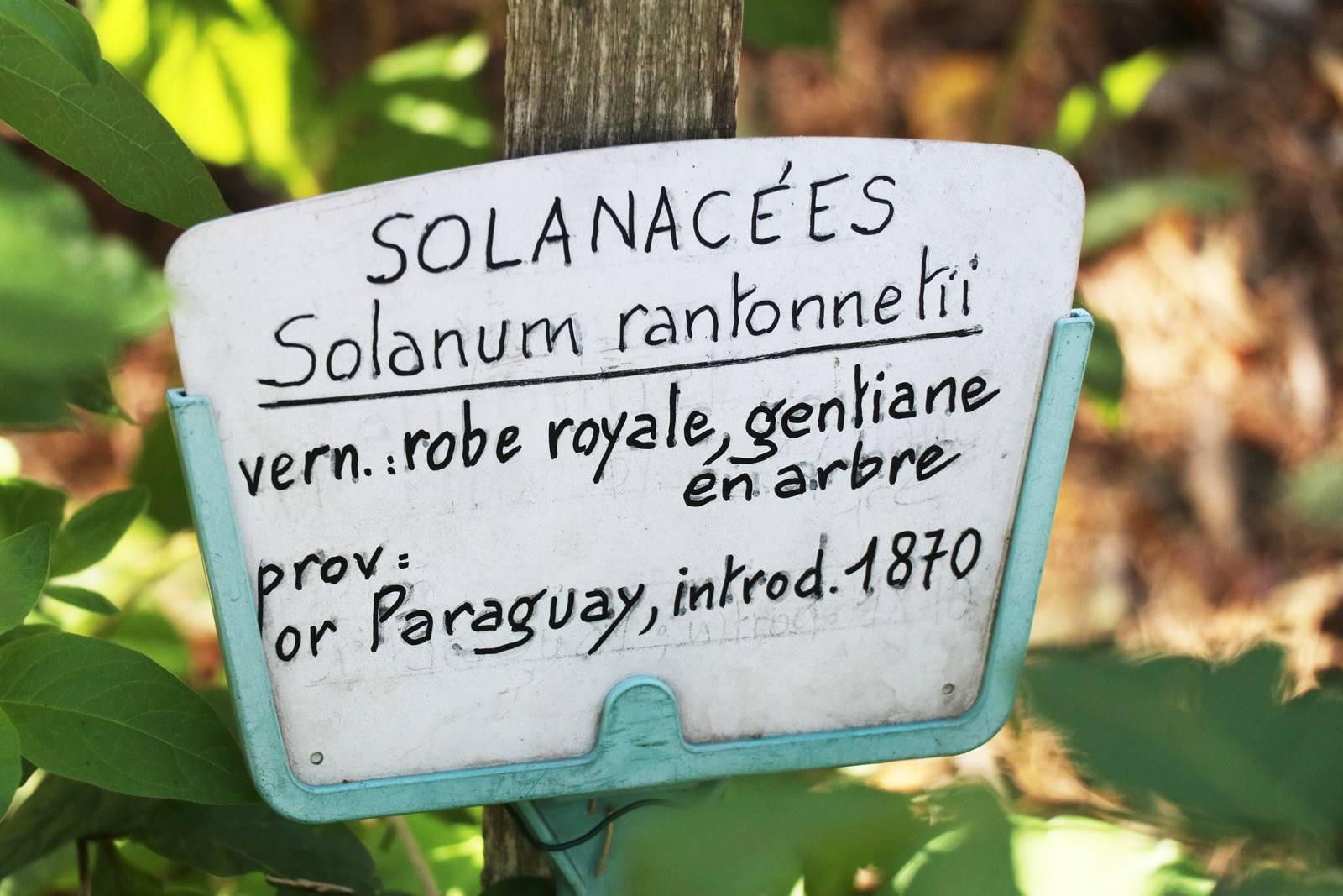 Jardin botanique Gassin (14)