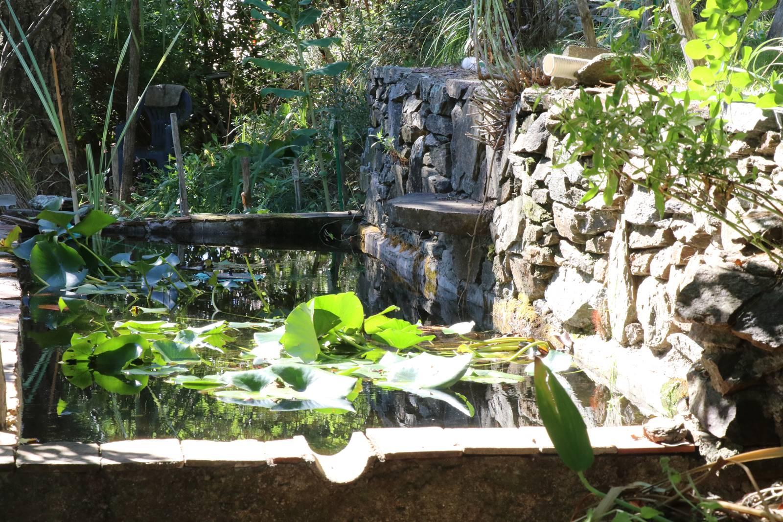 Jardin botanique Gassin (21)