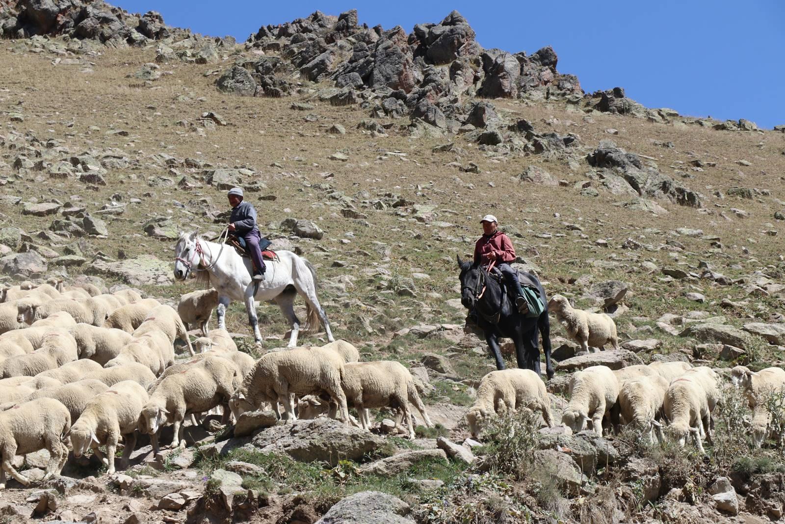 Guide du Kirghizistan (9)